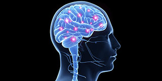 Stepan Lipid Nutrition for Brain Health thumbnail