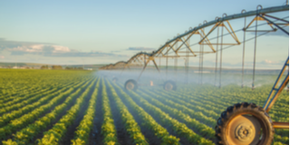 AgSoy® Methyl Esters for Crop Protection thumbnail