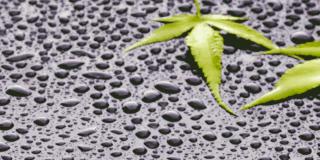 Chemours Capstone™氟表面活性剂缩略图
